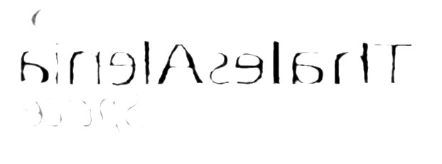 astrium-et-thales.jpg